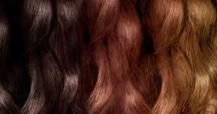 تولید انواع رنگ مو گارنیر